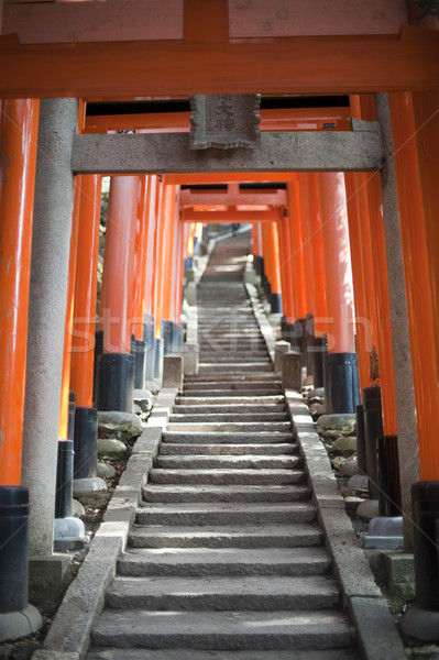 Torii gates at the Fushimi Inari-taisha Stock photo © photohome
