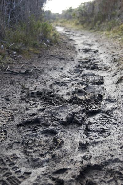 Sáros út láb sár sétál nyom Stock fotó © photohome