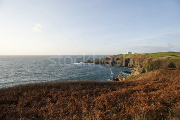 Lézard point cornwall historique phare grande-bretagne Photo stock © photohome