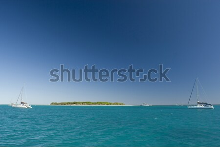 View of Lady Musgrave Island in Australia Stock photo © photohome