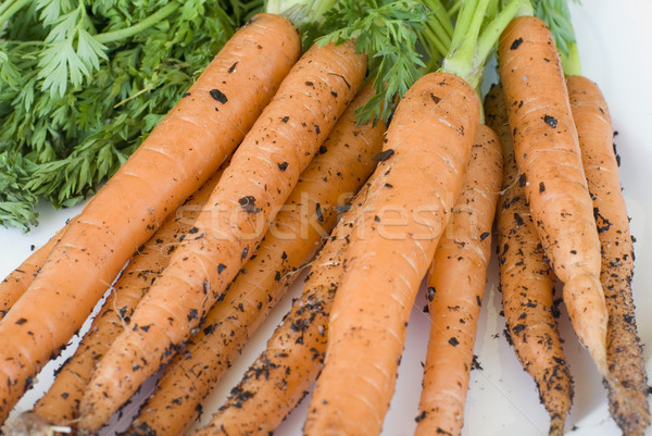 Maison augmenté carottes sol feuilles vertes Photo stock © photohome