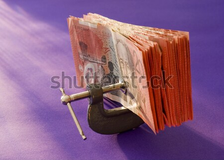 reduced spending Stock photo © photohome