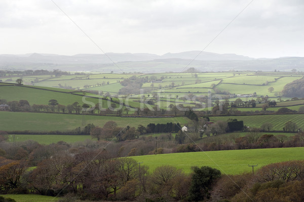 Misty Cornish landscape Stock photo © photohome