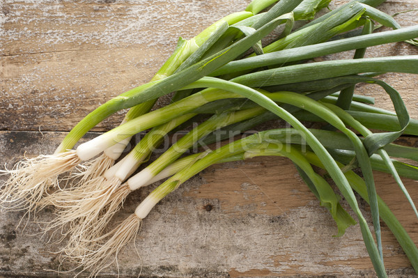 Bunch of fresh green spring onions Stock photo © photohome