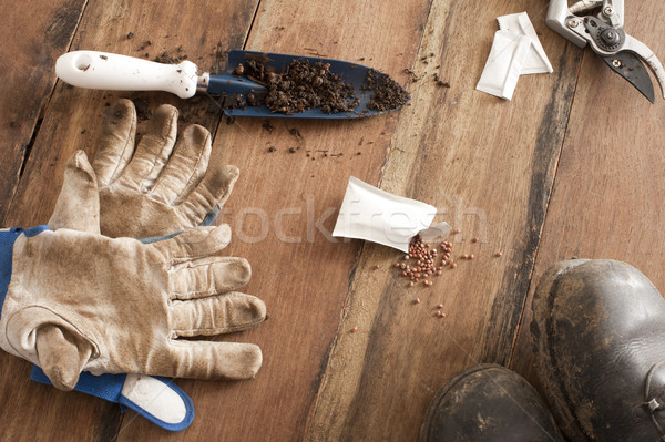 Gardening still life Stock photo © photohome