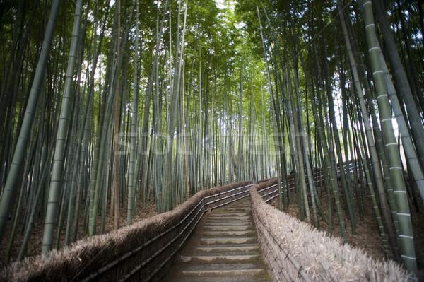 Bambusz séta templom Kiotó Japán lépcső Stock fotó © photohome
