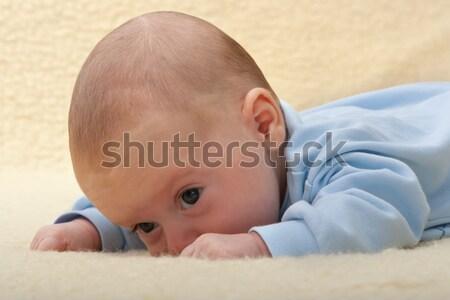 Baby twarz owiec skóry piękna Zdjęcia stock © Photoline