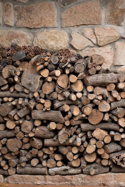 Big pile of logs Stock photo © Photooiasson