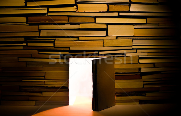 Wall of books with open door Stock photo © Photooiasson