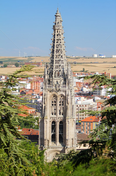 Gothic Pinnacles of Burgos Cathedral. Spain Stock photo © Photooiasson