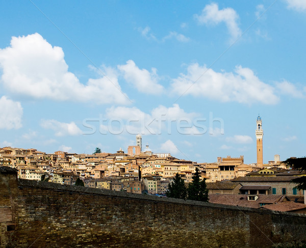 Antique houses and Mangia tower. Siena, Italy Stock photo © Photooiasson