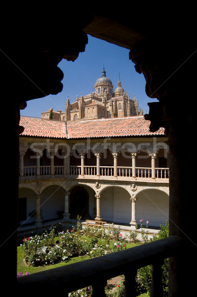 Cathedral of Salamanca from The Las Due Stock photo © Photooiasson