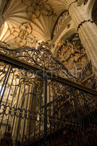 Grate Choir in the New Cathedral of Salamanca. Spain Stock photo © Photooiasson