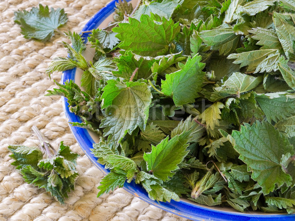 Freshly cut nettles in a bowl. Stock photo © Photooiasson