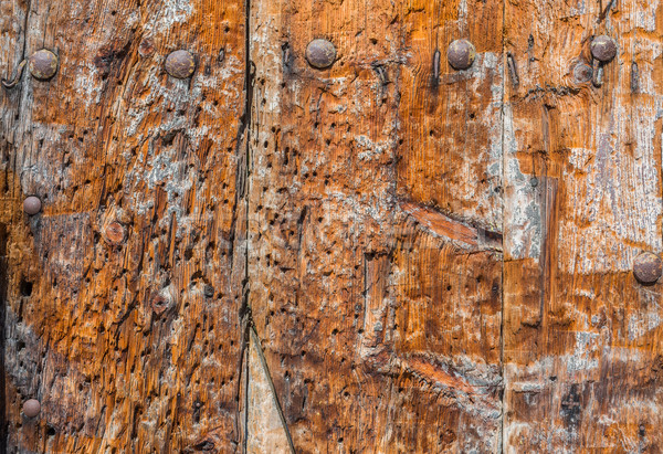 Weathered wooden panel background with a metallic rusty screws.  Stock photo © Photooiasson