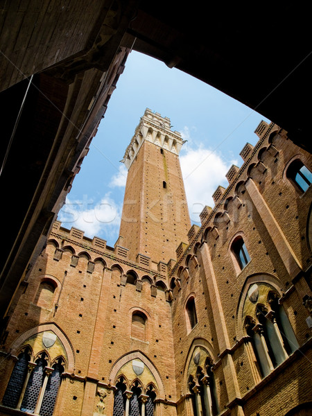 Palazzo Pubblico with Mangia tower in top. Siena, Italy Stock photo © Photooiasson