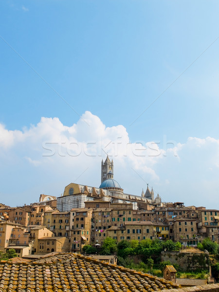 Siena view with the Duomo. Siena, Italy Stock photo © Photooiasson