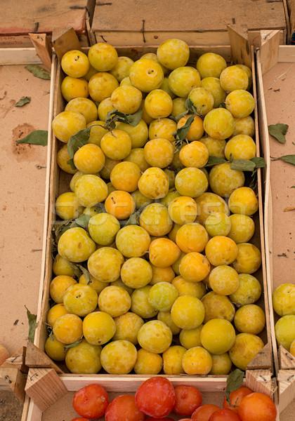 Friss citromsárga szilva piac érett csoport Stock fotó © Photooiasson