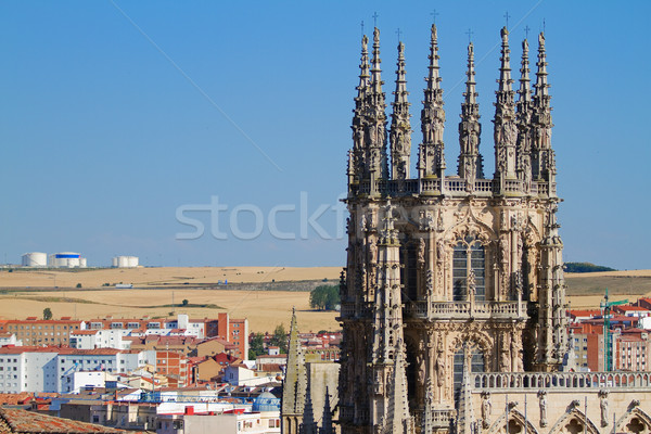 The Dome of The East Face of Burgos Cathedral. Spain Stock photo © Photooiasson