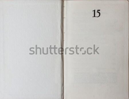 Boek eerste pagina oude grunge Stockfoto © Photooiasson