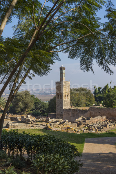 Ruins of Chellah necropolis. Rabat. Morocco. Stock photo © Photooiasson