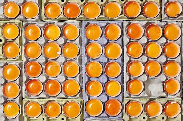 Narancs tojássárgája tojások egyedi üres hely tojás Stock fotó © Photooiasson