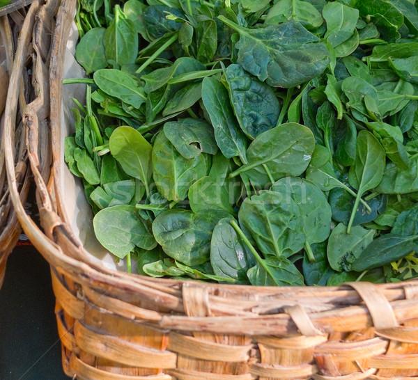 Organikus spenót piac levelek mezőgazdaság friss Stock fotó © Photooiasson