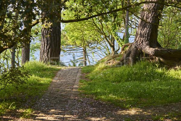 Antiguos romana carretera mar mediterráneo forestales Foto stock © Photooiasson