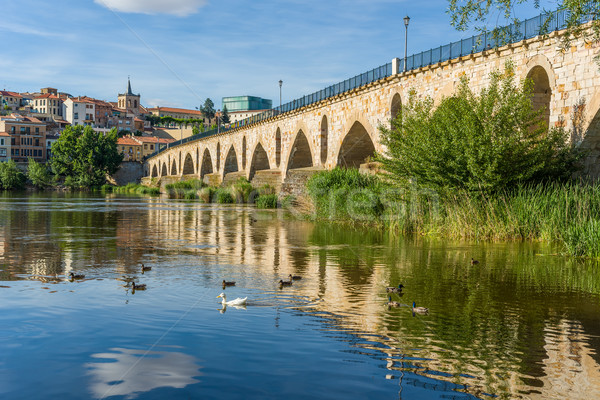 Stone bridge over Duero river. Zamora, Castilla y Leon, Spain. Stock photo © Photooiasson