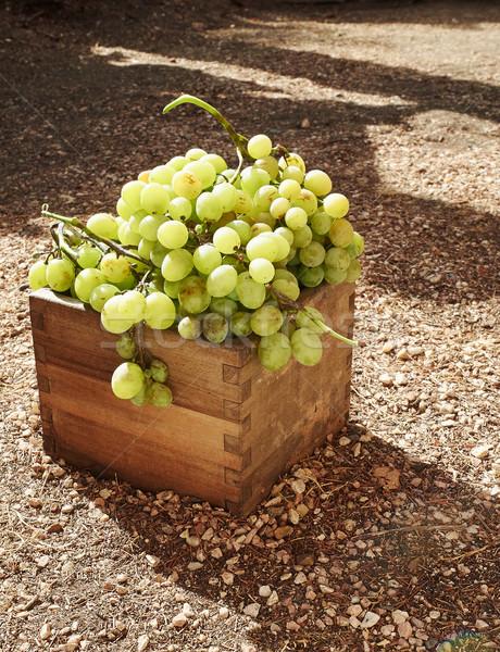 érett fehér szőlő doboz fából készült étel Stock fotó © Photooiasson