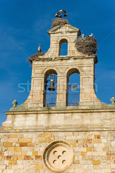 Nests stork in top of a bell tower  Stock photo © Photooiasson