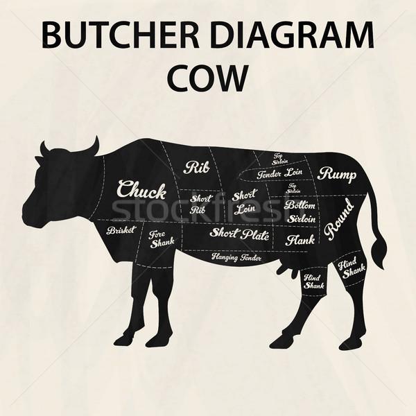 Illusztráció marhahús diagram tehén farm tányér Stock fotó © Photoroyalty