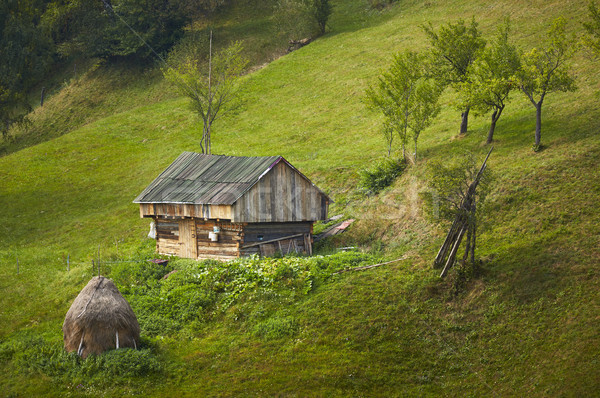 Old rustic wooden barn in Rucar-Bran pass, Romania Stock photo © photosebia
