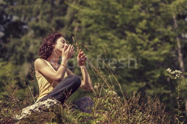 Nature rejoice Stock photo © photosebia
