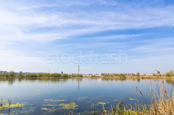 City suburbs and swamps Stock photo © photosebia