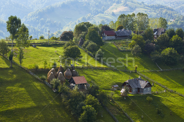 Springtime rural scenery, Transylvania, Romania Stock photo © photosebia
