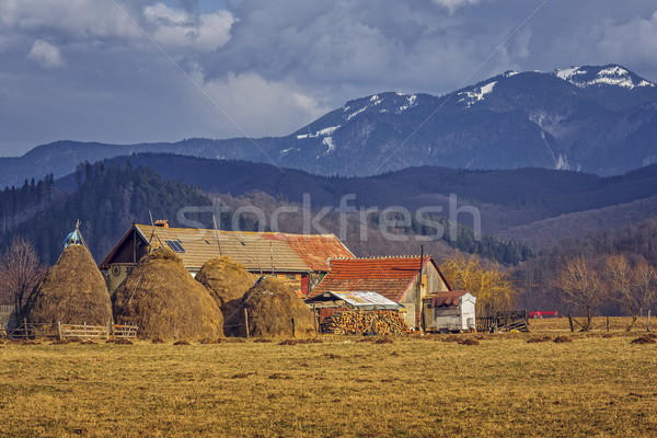 Romanian traditional rustic farm Stock photo © photosebia