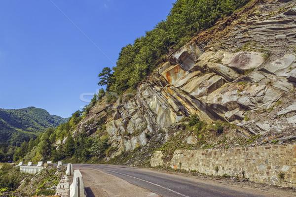 Stromy Urwisko drogowego spokojny lata krajobraz Zdjęcia stock © photosebia