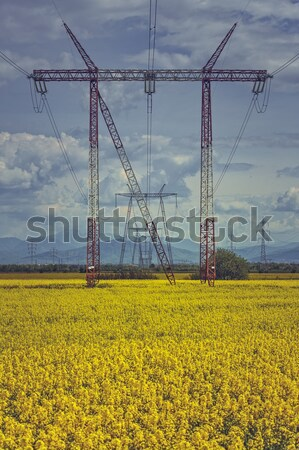 электрических энергии распределение сеть высокое напряжение электроэнергии Сток-фото © photosebia