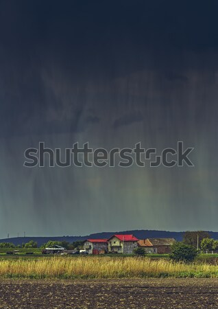 Heavy torrential rain Stock photo © photosebia