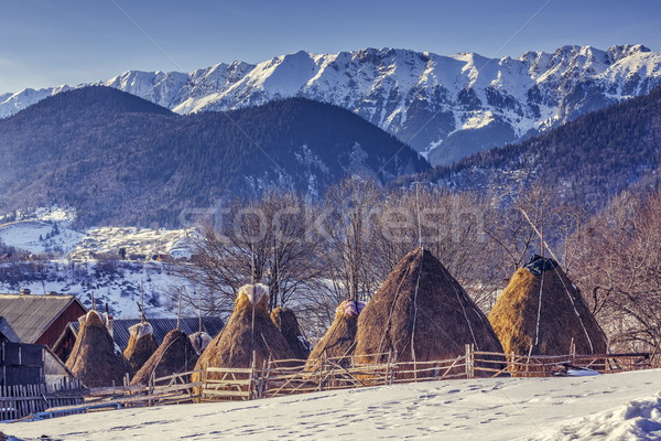 Farm with haystacks in winter Stock photo © photosebia