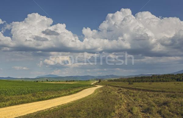 Vidéki kilátás vidéki út festői felhős égbolt Stock fotó © photosebia