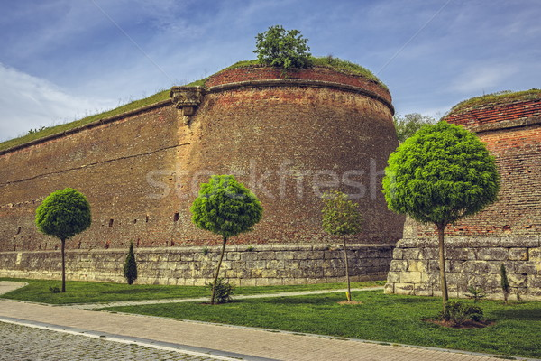 Medieval fortified walls and ornamental trees Stock photo © photosebia