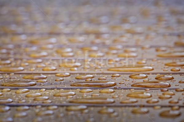 капли воды поверхность мелкий текстуры природы Сток-фото © photosebia