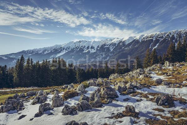 Zanoaga meadow, Piatra Craiului mountains, Romania Stock photo © photosebia