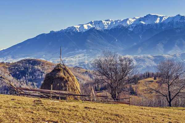 Alpine rural landscape Stock photo © photosebia