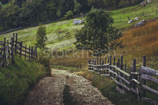Camino rural Rumania rústico tradicional pueblo Foto stock © photosebia