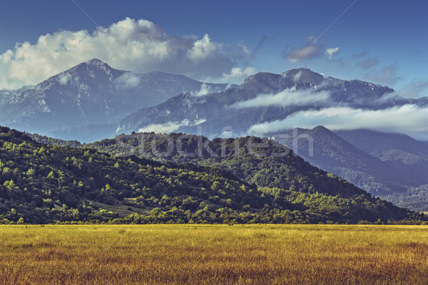 Idyllic summer mounain landscape Stock photo © photosebia