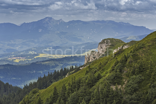 Scénique alpine paysage Roumanie vert pente Photo stock © photosebia