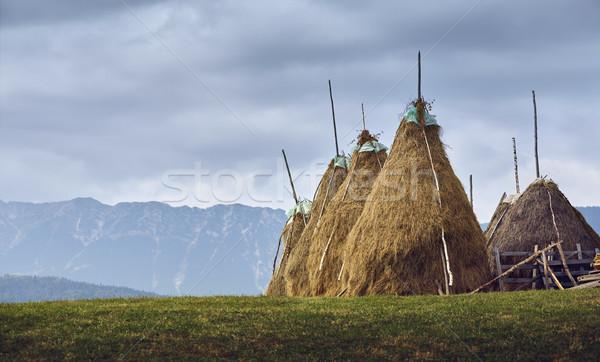 Rural cloudy landscape with haystacks in Transylvania, Romania Stock photo © photosebia